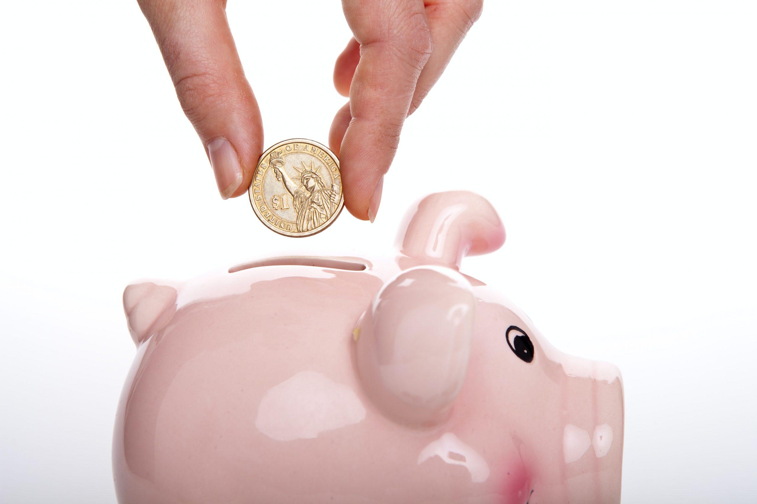 Website Payment Plan
